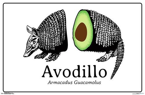Snorg Tees - Avodillo Poster Print - Item # VARTIARP16970