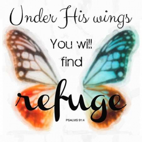 Under His Wings Poster Print by Taylor Greene - Item # VARPDXTGSQ350D
