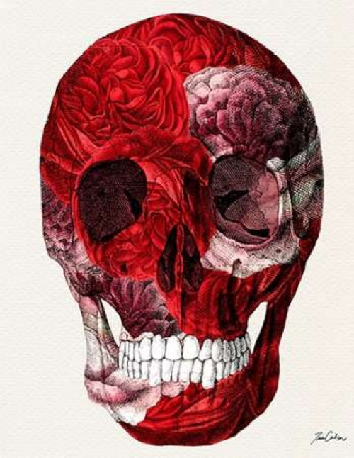 Skull With Roses Poster Print by Tina Carlson - Item # VARPDXTCRC075B