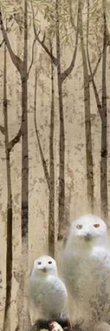 Owls in the Trees 2 Poster Print by Kimberly Allen - Item # VARPDXKAPL011B