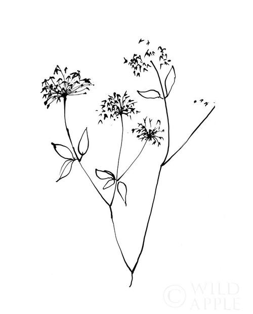 Ink Flowers 09 on White Poster Print by Avery Tillmon - Item # VARPDX49249
