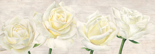 Classic Roses Poster Print by Thomlinson Jenny - Item # VARPDX4JT4924