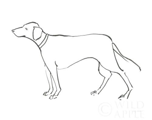 Ink Dog VI Poster Print by Avery Tillmon - Item # VARPDX52095