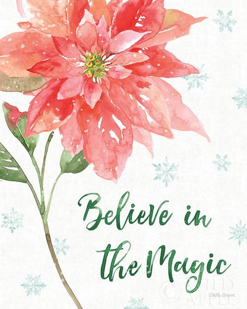 Holiday Flora V Poster Print by Beth Grove - Item # VARPDX52214