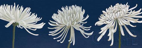 Morning Chrysanthemums V Dark Blue Poster Print by Kathrine Lovell - Item # VARPDX53374