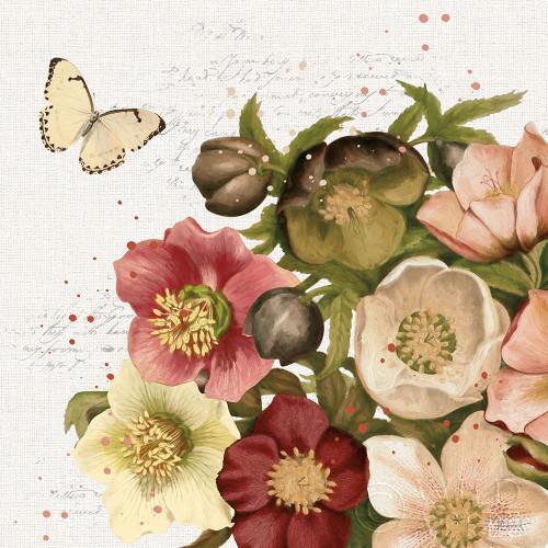 Vintage Petals II Poster Print by Katie Pertiet - Item # VARPDX53935