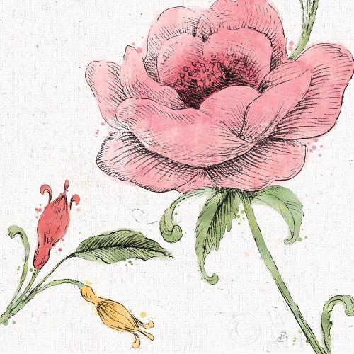 Blossom Sketches II Color Poster Print by Daphne Brissonnet - Item # VARPDX54830