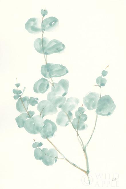 Eucalyptus Branch I Poster Print by Chris Paschke - Item # VARPDX55063