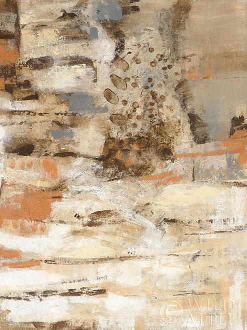 Copper and Wood II Poster Print by Silvia Vassileva - Item # VARPDX55541