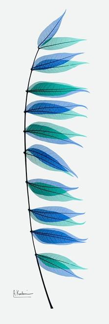 Malificent Azure 1 Poster Print by Albert Koetsier - Item # VARPDXAK8PL029A