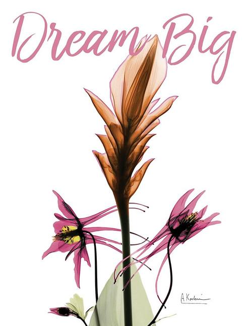 Dream Big Floral Poster Print by Albert Koetsier - Item # VARPDXAK8RC577A