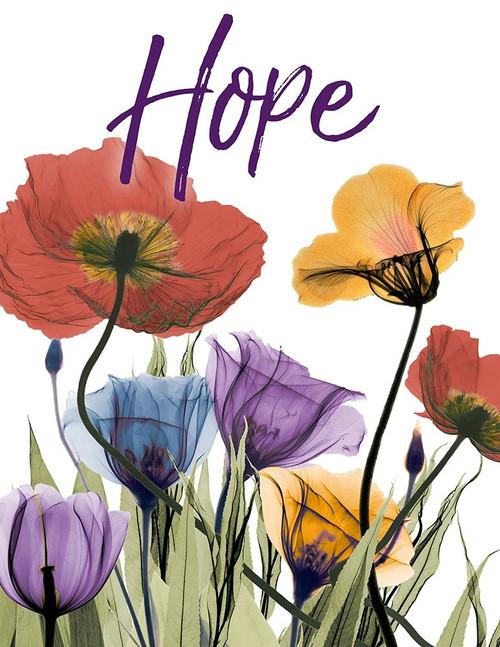 Hopeful Flowerscape Poster Print by Albert Koetsier - Item # VARPDXAK8RC577K