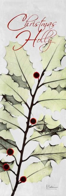 Christmas Calla Lily Poster Print by Albert Koetsier - Item # VARPDXAKPL121A