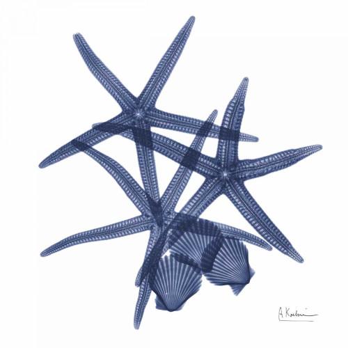 Sea Life in Blue Poster Print by Albert Koetsier - Item # VARPDXAKXSQ319A