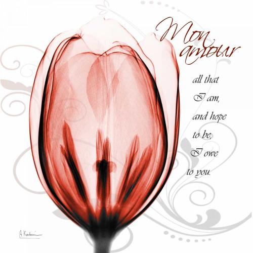Happy Tulip in Red - Mon Amour Poster Print by Albert Koetsier - Item # VARPDXAKXSQ323A2