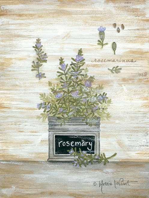 Rosemary Botanical Poster Print by Annie LaPoint - Item # VARPDXALP1818