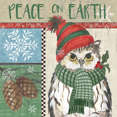 Owl Square Poster Print by Anita Phillips - Item # VARPDXAP2188