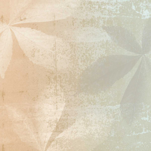 Shaded Leaves 2 Poster Print by Alonzo Saunders - Item # VARPDXASSQ100B