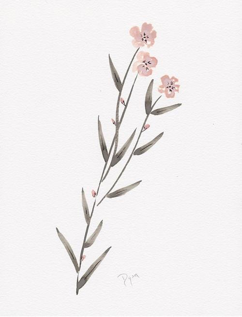 Wildflower Organics III Poster Print by Allen Kimberly - Item # VARPDXBDRC193C