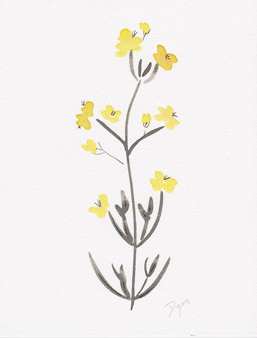 Wildflower Organics VI Poster Print by Allen Kimberly - Item # VARPDXBDRC193F