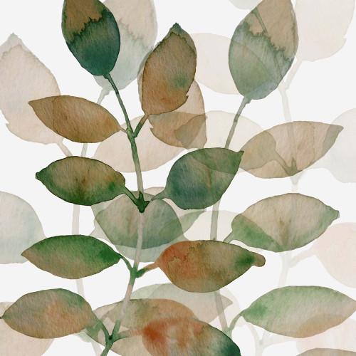 Leaf By Leaf 1 Poster Print by Boho Hue Studio Boho Hue Studio - Item # VARPDXBHSSQ023A