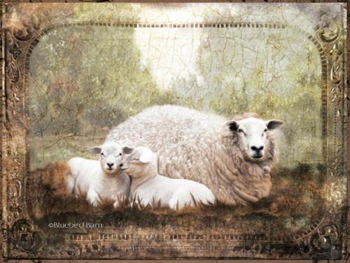 Vintage Ewe and Sleeping Lambs Poster Print by Bluebird Barn Bluebird Barn - Item # VARPDXBLUE253