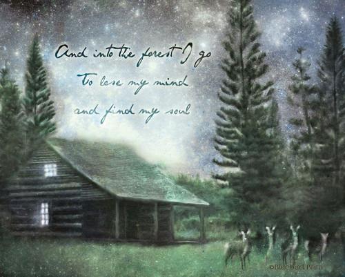Into the Forest I Go Poster Print by Bluebird Barn Bluebird Barn - Item # VARPDXBLUE364