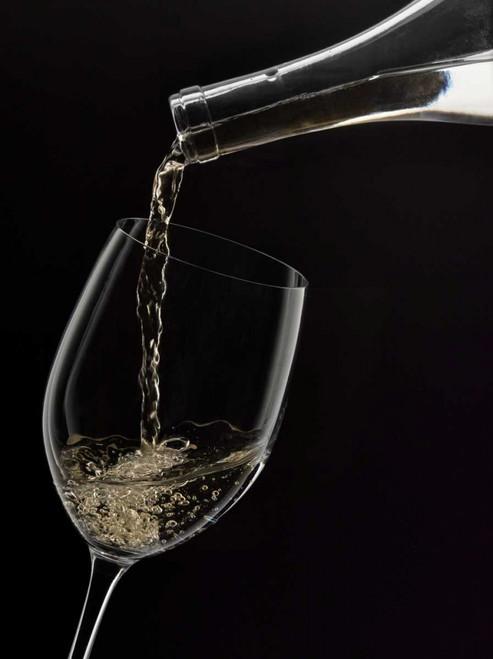 Wine Pour 2 Poster Print by Barry Seidman - Item # VARPDXBSRC007B
