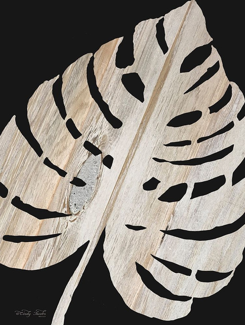 Palm Frond Wood Grain III Poster Print by Cindy Jacobs - Item # VARPDXCIN1541