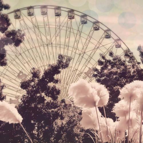 Feathery Ferris Poster Print by Ashley Davis - Item # VARPDXDASQ006