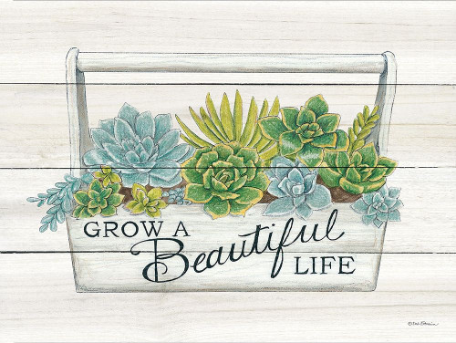 Beautiful Life Succulents Poster Print by Deb Strain - Item # VARPDXDS1495