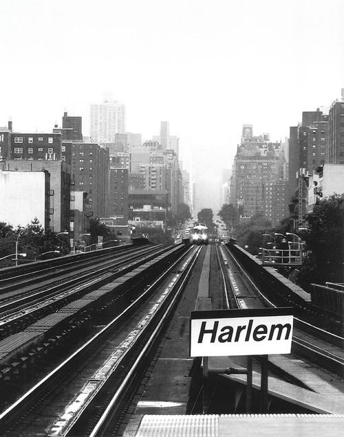 Next Stop Harlem Poster Print by Ellen Fisch - Item # VARPDXEF103