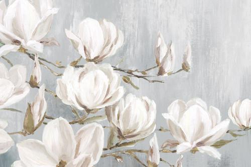White Magnolia Poster Print by Eva Watts - Item # VARPDXEW402A