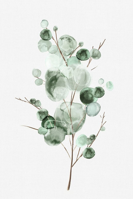 Tender Sprout I Poster Print by Eva Watts - Item # VARPDXEW406A