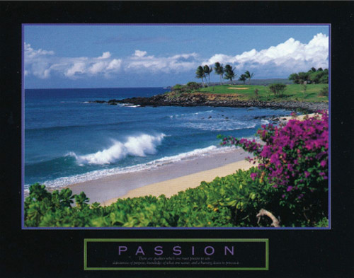 Passion - Beach Poster Print by Unknown Unknown - Item # VARPDXF101500