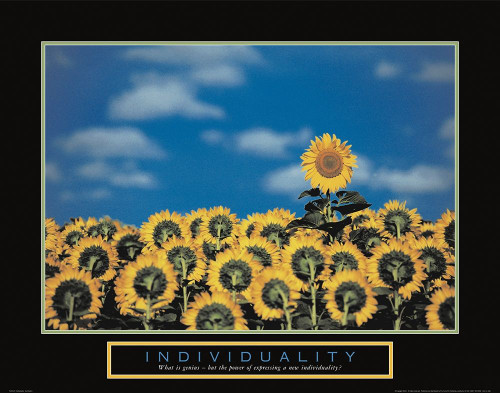 Individuality - Sunflowers Poster Print by Unknown Unknown - Item # VARPDXF102124