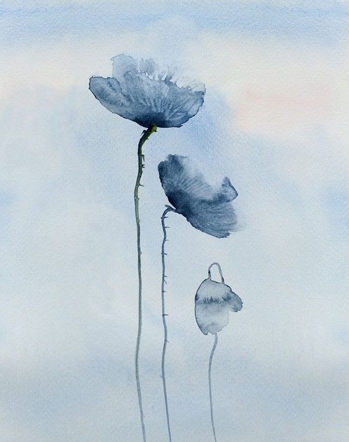 Poppies in blue Poster Print by Anonymous Anonymous - Item # VARPDXFAF1301
