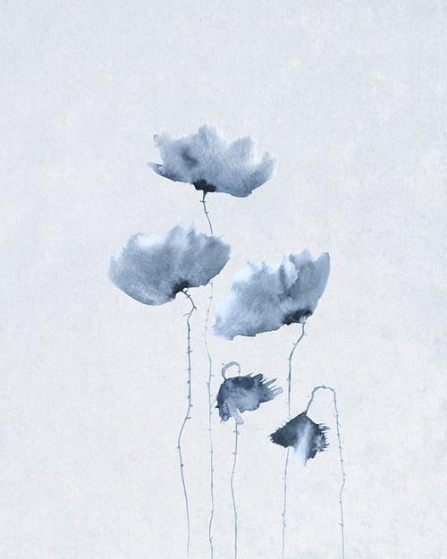 Blue Poppies 1  Poster Print by Anonymous Anonymous - Item # VARPDXFAF1302