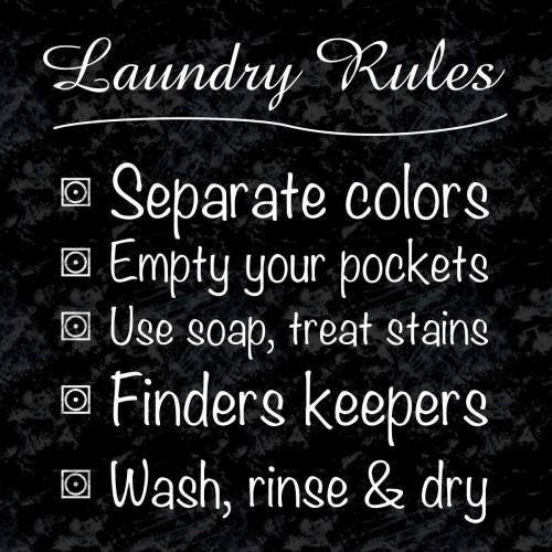 Laundry Rules Poster Print by Lauren Gibbons - Item # VARPDXGLSQ132A