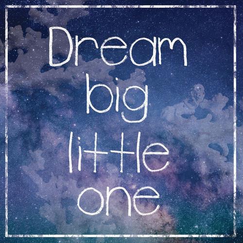 DreamBig Poster Print by Lauren Gibbons - Item # VARPDXGLSQ208B