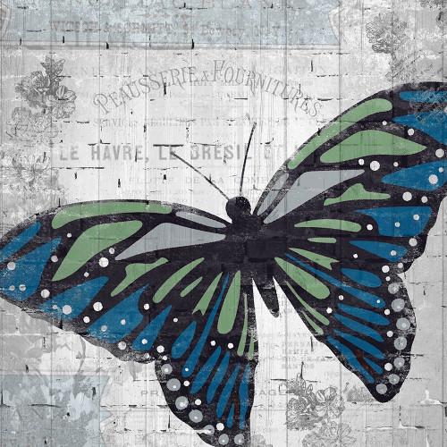 Vintage Butterfly 1 Poster Print by Allen Kimberly - Item # VARPDXKASQ519A