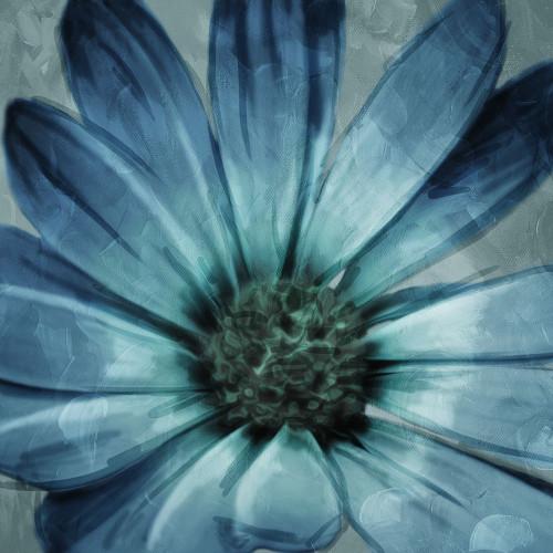 Uplifting Blue Flower Mate Poster Print by Mlli Villa - Item # VARPDXMVSQ293B