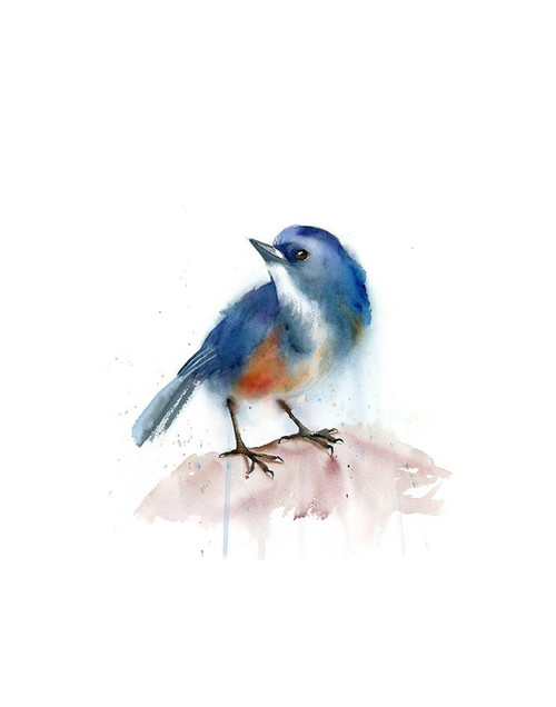 Blue Bird Poster Print by Olga Shefranov - Item # VARPDXOG1357