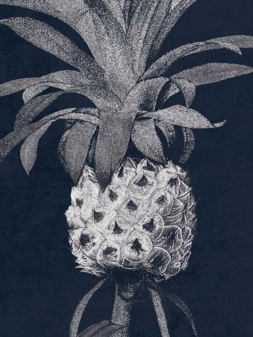 Indigo Pine 1 Poster Print by Sheldon Lewis - Item # VARPDXSLBRC350A