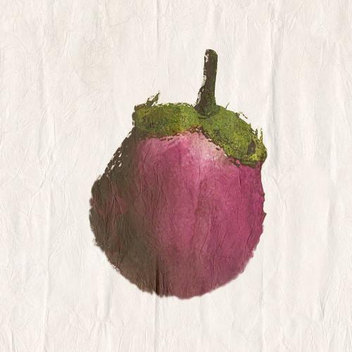 Eggplant Poster Print by Sheldon Lewis - Item # VARPDXSLBSQ707A