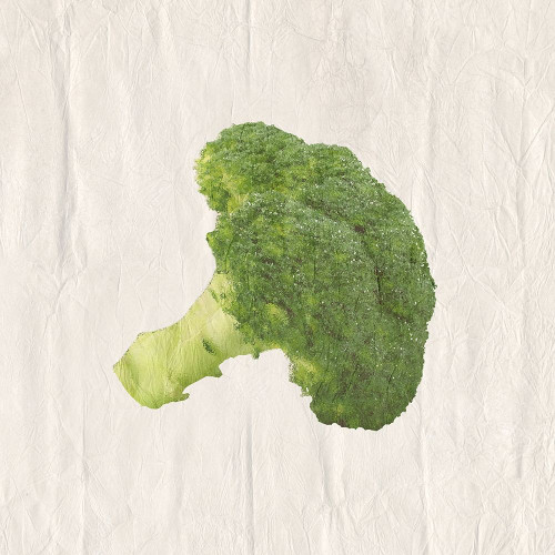Broccoli Poster Print by Sheldon Lewis - Item # VARPDXSLBSQ707C