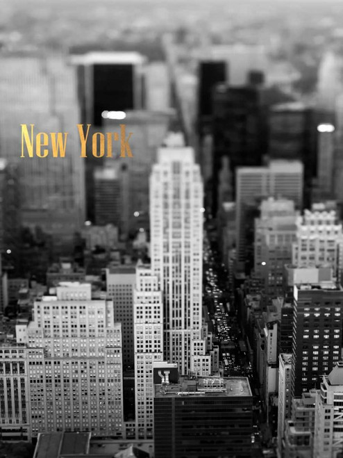Gold NY Fifth Ave Poster Print by Tracey Telik - Item # VARPDXTKRC134A