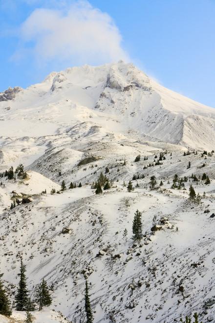 Sunrise view of Mt. Hood near Timberline Lodge, Lolo Pass, Mt. Hood Wilderness Area, Oregon, USA Poster Print by Stuart Westmorland - Item # VARPDDUS38SWR0307