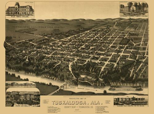 Tuskaloosa Alabama - Wellge 1887 Poster Print by Wellge Wellge # ALTU0001