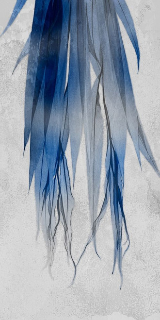 Indigo Growth 2 Poster Print by Albert Koetsier # AK8RN015B